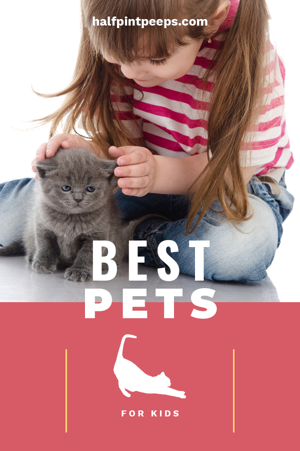 So, you are thinking about getting your child a pet. I think that is great. But, before you make the move, be sure to read on and learn about the best pets for kids. Maybe you need a pet for small children, or one that is hypoallergenic. Whatever your needs, you will be sure to know more about the pet that is best for you child and your family. #bestpetforkids #tipsforparents #petsandkids