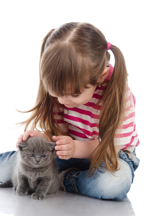 So your kids are begging for a pet but you don't know what the best pets for kids are. You're in luck. We have a list of the best pets for kids. Cats are always a good choice.
